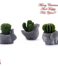 Buy Lovely Cactus Shape Decorative Candles with Stand (Set of 3) christmas-decoration online