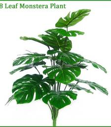 Buy Monstera Plant  artificial-flower online