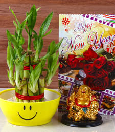 Buy New year goodluck wish combo new-year-gift online
