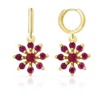 Mahi Sublime Beauty Earrings With Gold Plating