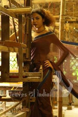 Self Kantha Saree
