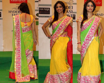 Eyeful stylish half-half saree