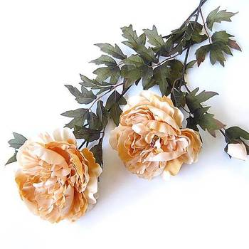 Silk Peony x 2 (Cream colour)