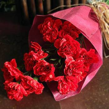 Bunch of Red Artificial Carnations