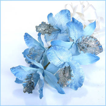 Bunch of Exotic IRIS flowers - 5 Stems - Blue